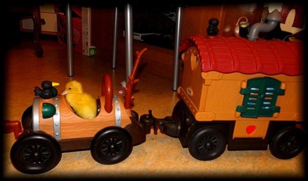mon   canard qui part en voyage lol