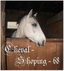Photo de Cheval-Shoping-68