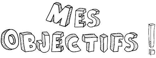 Mes Objectifs :