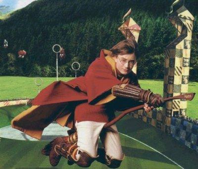 *** Chapitre 9 = Les sélections de Quidditch ***