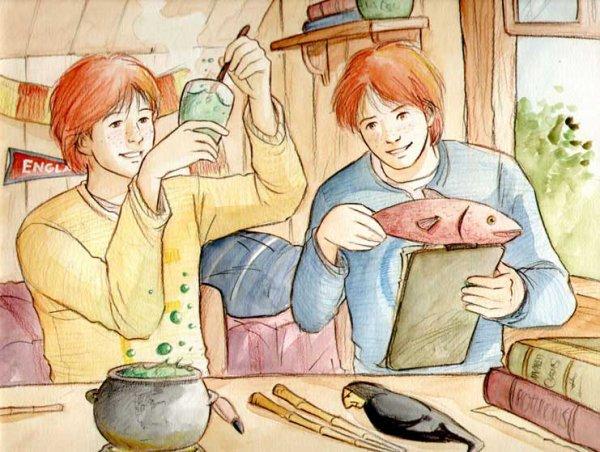 °°° Chapitre 25 = Mr et Mrs Weasley °°°