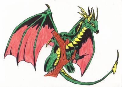 Dessin dragon couleur le coffre aux dessins - Dessin dragon couleur ...
