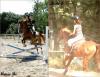 """De temps en temps, les gens me disent : """"Calme toi, c'est juste un cheval"""", ou """"c'est beaucoup d'argent pour juste un cheval"""". Ils ne comprennent pas la distance parcourue, le temps passé ou les coûts impliqués pour """"juste un cheval"""". Certains de mes moments dont j'ai le plus de fierté sont arrivés grâce à """"juste un cheval"""". De nombreuses heures sont passées, et ma seule compagnie était """"juste un cheval"""", mais je ne me suis pas sentie une seule fois insignifiante. Certains de mes moments les plus tristes ont été amenés par """"juste un cheval"""", et dans ces jours d'obscurité, le doux contact de """"juste un cheval"""" me réconforte et me donne une raison de surmonter la journée. Si vous aussi, vous pensez que c'est """"juste un cheval"""", alors vous pourrez surement comprendre des expressions comme """"juste un ami"""", """"juste un lever de soleil"""" ou """"juste une promesse"""". """"Juste un cheval"""" apporte à ma vie l'essence même de l'amitié, de la confiance et de l'amour. """"Juste un cheval"""" apporte la compassion et la patience qui font de moi une meilleure personne. A cause de """"juste un cheval"""", je me lèverai tôt et regarderai le futur pleine d'envie. Donc pour moi et les gens comme moi, ce n'est pas """"juste un cheval"""" mais une incarnation de tous les espoirs et les rêves du futur, des tendres mémoires du passé, et de la pure joie du moment. """"Juste un cheval"""" fait ressortir ce qui est bon en moi et détourne mes pensées de moi-même et des soucis de la journée. J'espère qu'un jour vous comprendrez que ce n'est pas """"juste un cheval""""; pour moi """"juste un cheval"""" me permet de rester """"juste une femme"""". ♥"""