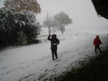 ila neiger