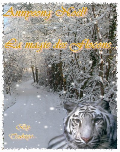 Annyeong Noël... La magie des Flocons...