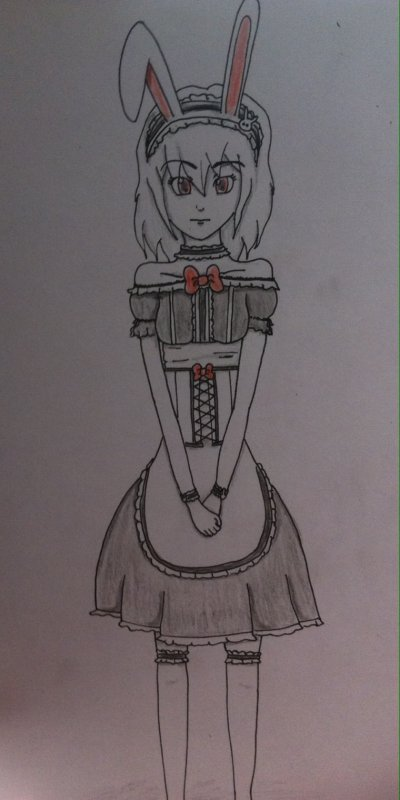 Alice Bunny Maid