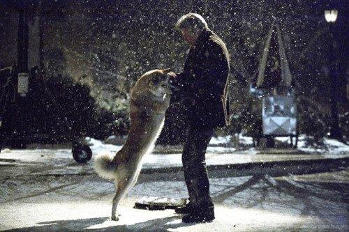 «L'homme naît perfectible, l'animal naît parfait. »