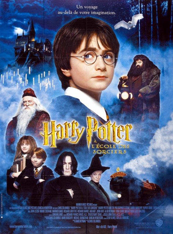 Critique no. 114 - Harry Potter and the philospher's stone (Harry Potter et l'école des sorciers)