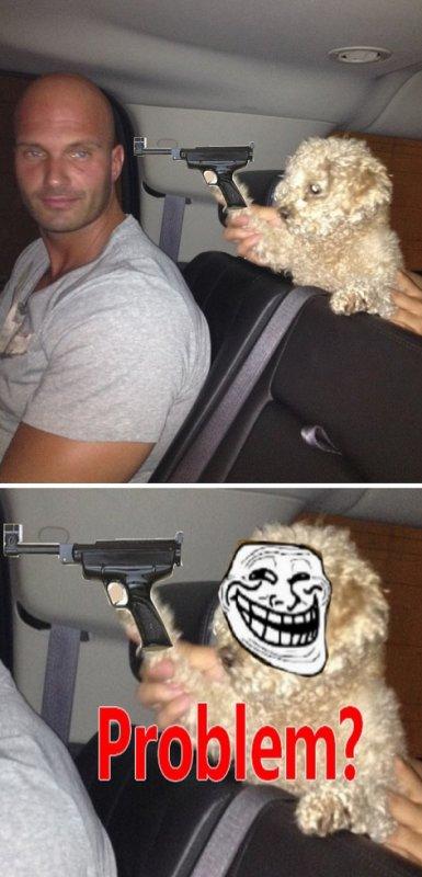 Fozzi, le chien tueur
