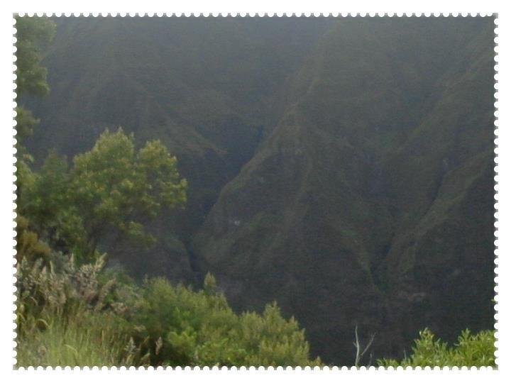 La nature ^^