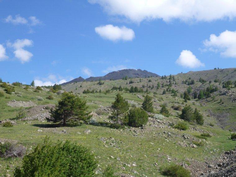 Le Chenaillet ( 2650 m)