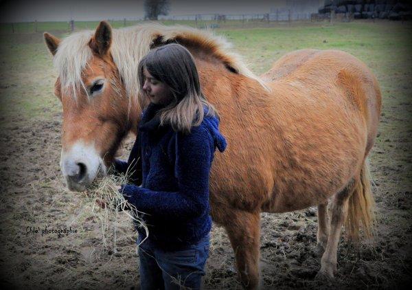 ♥  Un cheval? Non, plus que ça  ♥