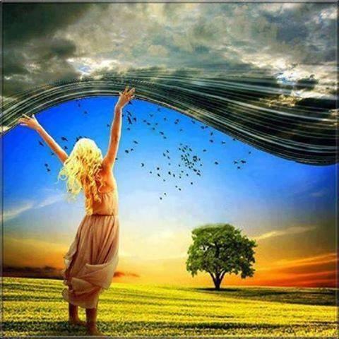 ↪️Parfois les gens pensent que marcher sur l' eau ou dans les airs relève du miracle.↩️ Mais...,↔️ a bien réfléchir :: , ⏩ je crois que déjà marcher sur terre est  déjà un miracle.⏪😀