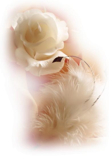 """Une rose rouge 🌹dit a une rose blanche ::::::  Nous somme si belles comme fleur ......  < La rose blanche répond  < Oui : c est vrai que nous sommes belles ::::: <  Mais tu n """" as pas encore vue La beauté de la personne qui lit ce message   😍"""