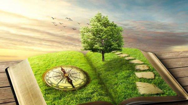Chaque jour qui se lève : on ne vis jamais la même expérience,..😁..  Chaque jour et chaque expérience est unique en son genre ..🤩..