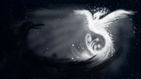 Ténèbres ou Lumière : Côté ténèbres