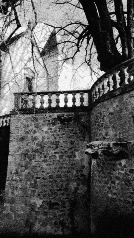 Castel de Nieul suite...