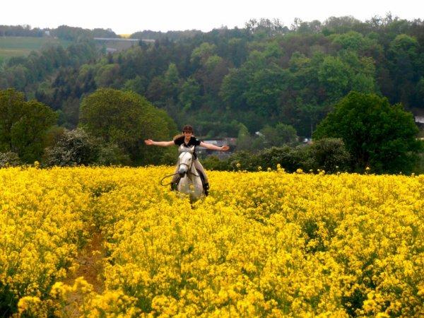 Promenade dans les champs !