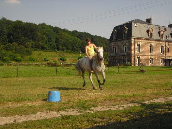 """""""Mon cheval est extrêmement poli : il a attendu, pour faire tout ce qu'il savait déjà faire, que je sois capable de le lui demander."""""""