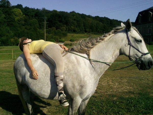 """""""Tant que nous ne demandons pas le cheval d'oublier qui il est, il nous rappelleront de ce que nous voulons être."""""""