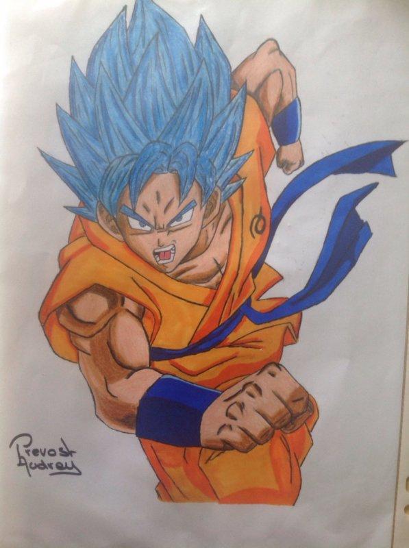 Dessin de Sangoku SSJ Blue (DBS)