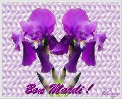 Telles des branches de lilas !