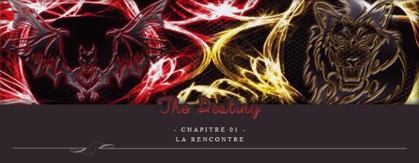 The Destiny - Chapitre1