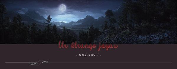 One-Shot : Un étrange joyau