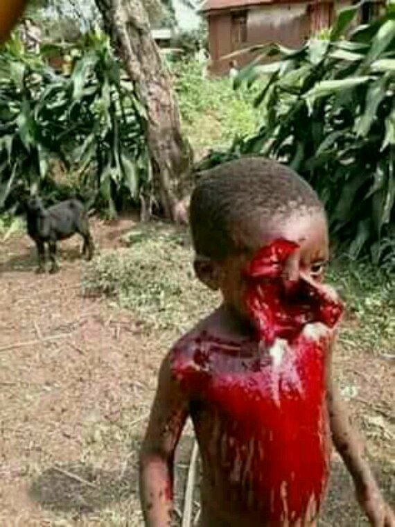 The should just imagined this kid shot by Cameroon army