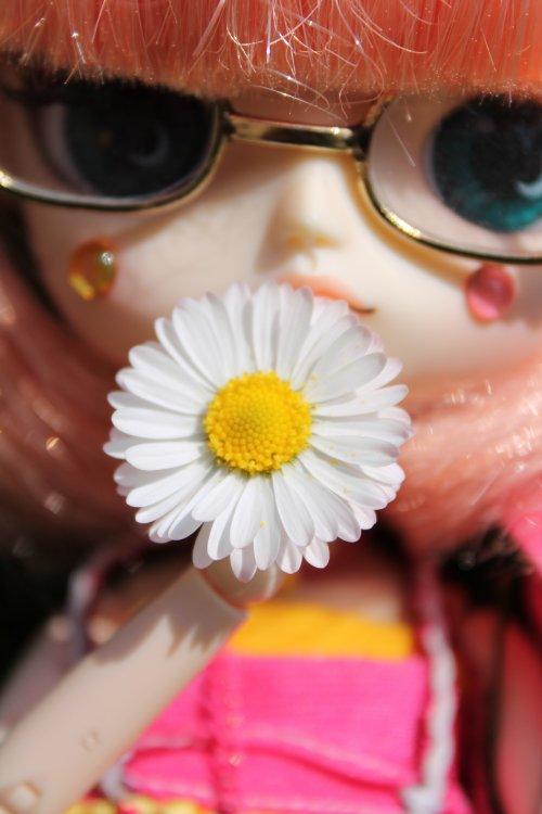 Les fleurs, les fleurs les fleurs...
