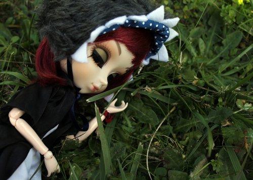 Je suis comme un requin dans l'herbe...