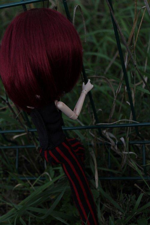 Mitsuki en vrac