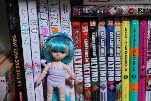 Faites des dons pour une autre étagère à mangas...