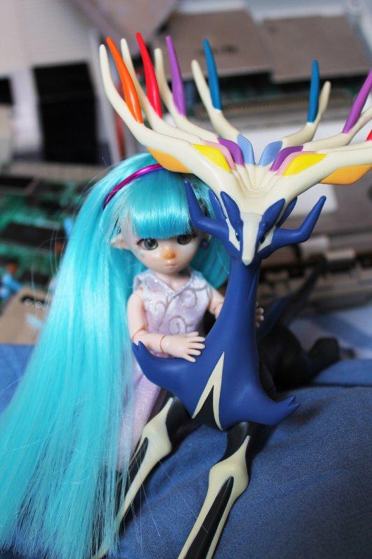 Les pokémon existent chez les dolls...
