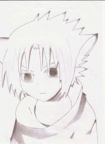 Sasuke-Neko Amélioration