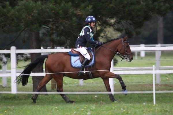 Quoi de plus beau q'un mignon gros poney tout fou ? =)