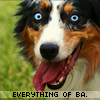 Everything-Of-BA
