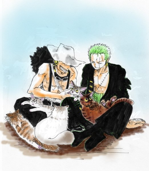 Image de Zoro part 6