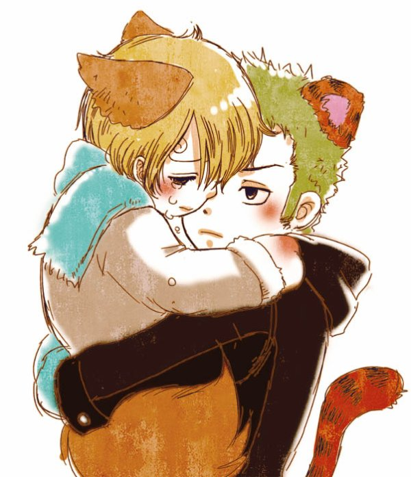 Image zoro x Sanji (animal) 225