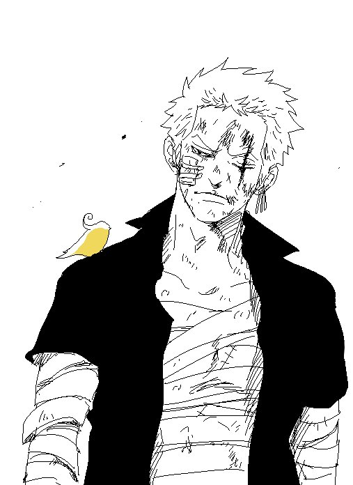 Image de Zoro part 10
