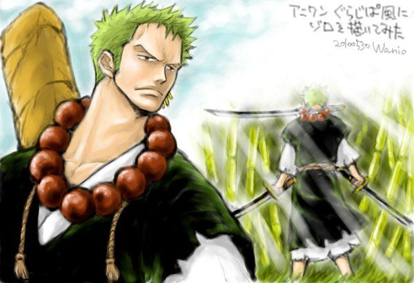 Image de Zoro part 20