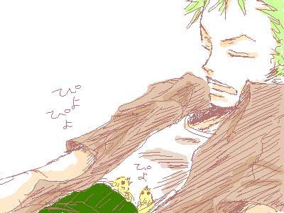 Image de Zoro part 24