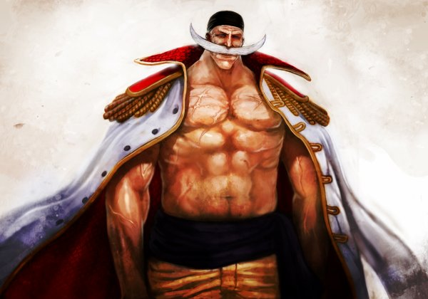 Image Personnage One Piece part 3