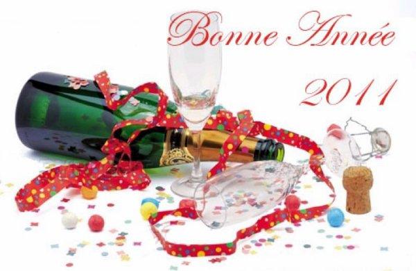 bone annee 2011 :-)