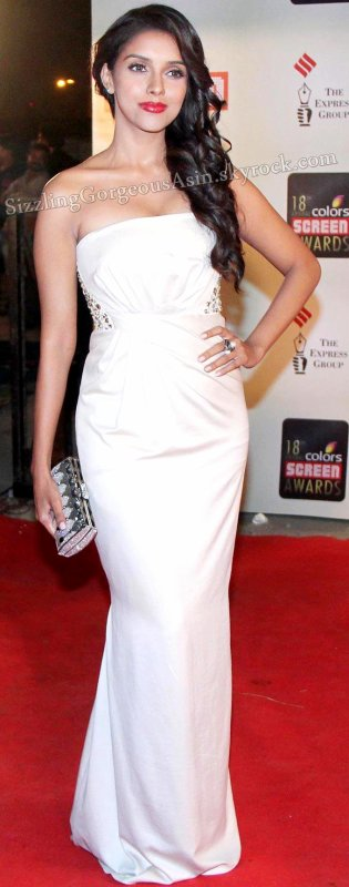 More pics Asin @ Screen awards 2012