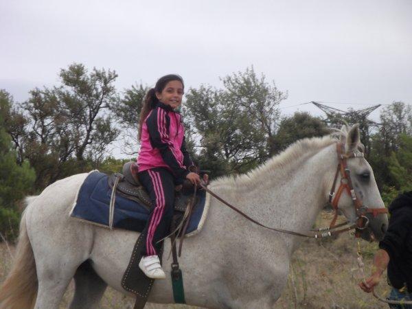 mwa & mon cheval