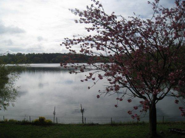 Session de 48h sur le lac de Pareloup