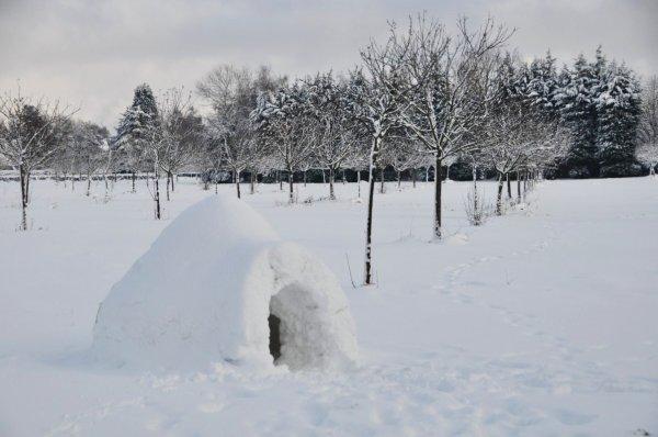 Les célèbres igloos de Normandie ^^