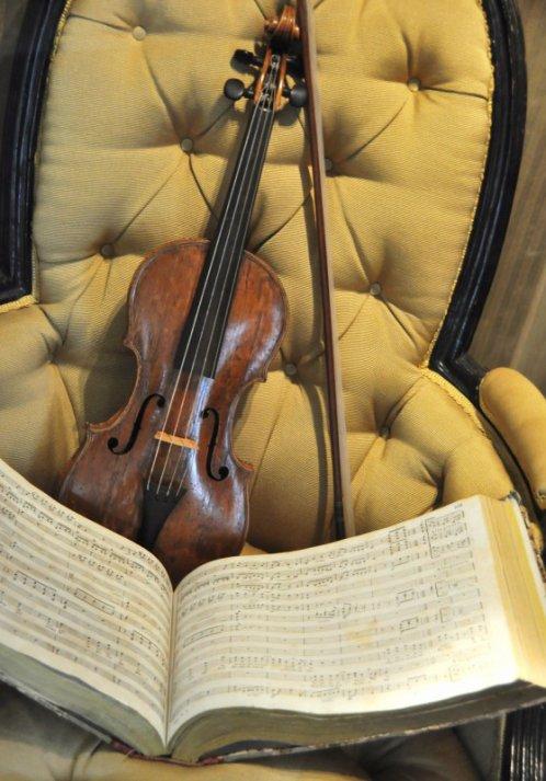 """Le """"violon d'Ingres"""" ! Au propre comme au figuré !"""