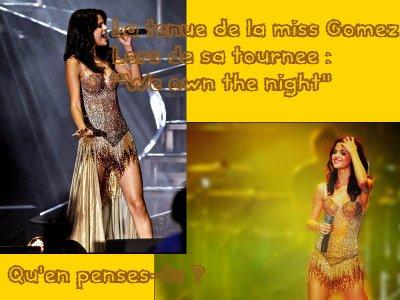 Tenue de scène de Selena